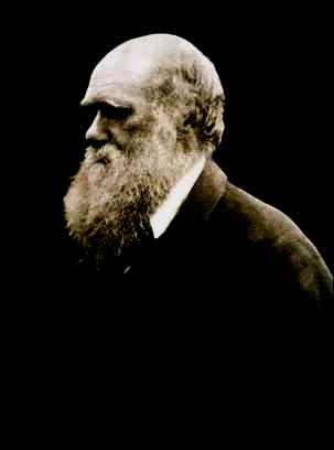 Charles Darwin définition + 3 vidéos dans Science-Technologie charlesdarwin02
