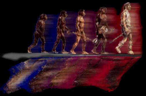 evolution01 dans Science-Technologie