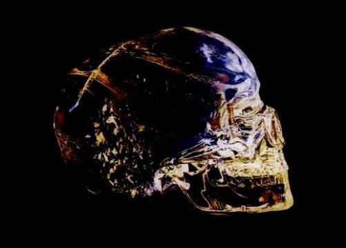 Les Crânes de cristal définition + 5 vidéos dans Archéologie cranecristal02