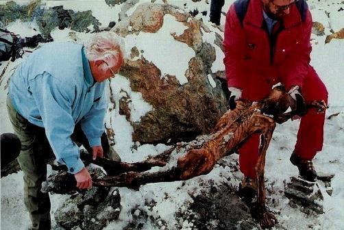La momie Ötzi définition + 5 vidéos dans Archéologie otzimomie01