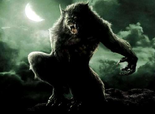 Loup-garou ou Lycanthrope définition + 2 vidéos dans Mythe-Légende lycanthrope02